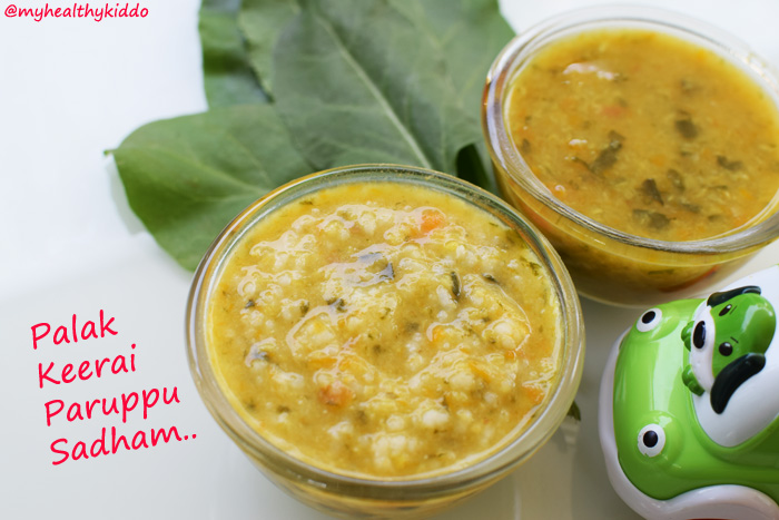 Indian Spinach-Palak Recipe for babies-4