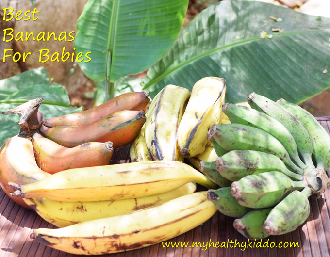 Best Bananas for Babies