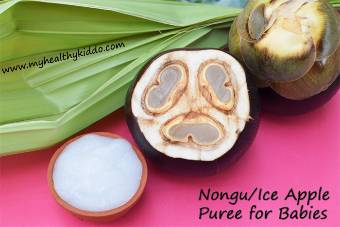Nongu for babies-1